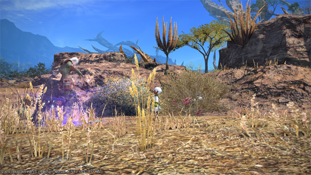 FFXIV Review Graphics 2