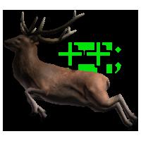 wildlifeplus